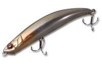 Bent Minnow