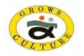 Grows Culture blesny 120